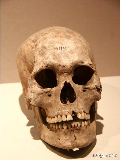 王莽的頭顱有什么稀奇?竟然讓歷代皇帝收藏了快三百年