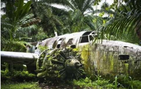 二战时一飞行员跳伞失败,挂在树上整整70年,被发现时已没人样
