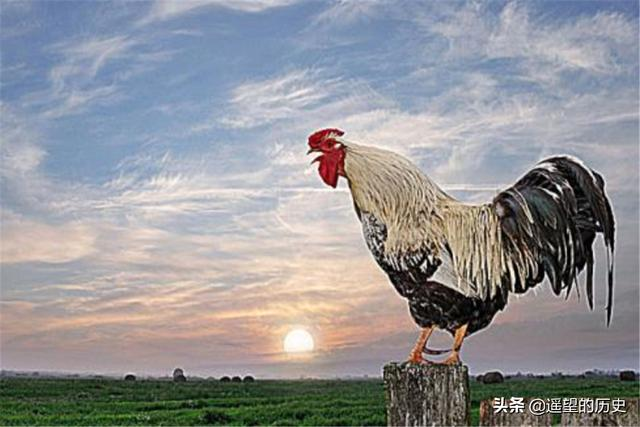 古人言:一更人、二更火、三更鬼、四更賊、五更雞,是什么意思?